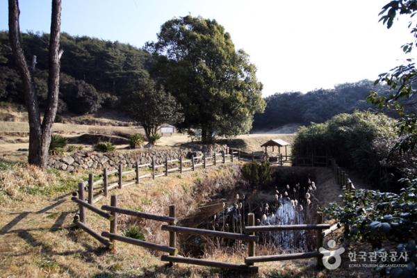 참선길을 오가는 길에 작은 연못이 있다.