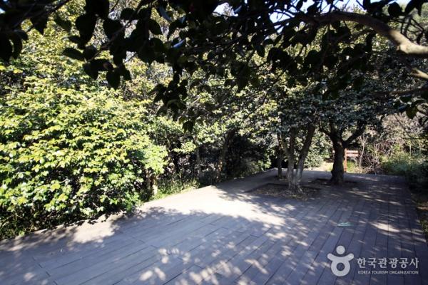 부도를 보기 위해 건너가는 언덕 중간에는 잠시 쉴 수 있는 데크가 설치되어 있다.