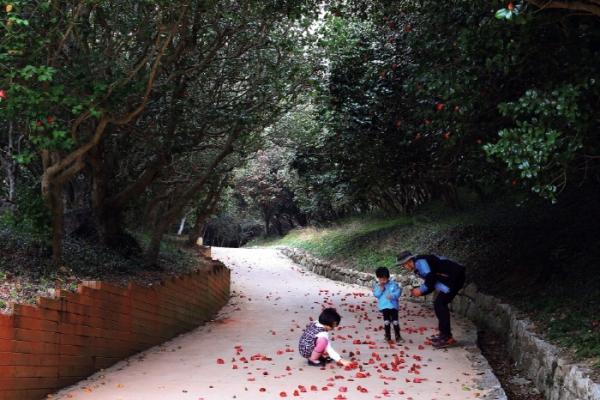 붉은 동백이 피는 이때 가족 여행객들이 옥룡사를 즐겨 찾는다.(광양시청 관광과 제공)