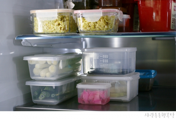대파보관법 냉장, 냉동 살림노하우 공