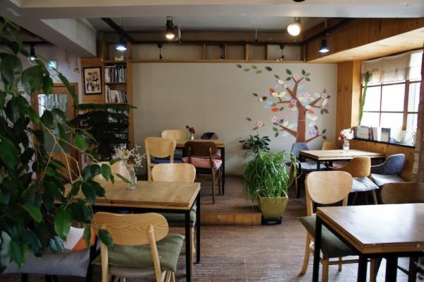 카페 나무