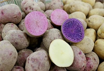감자 사진입니다.