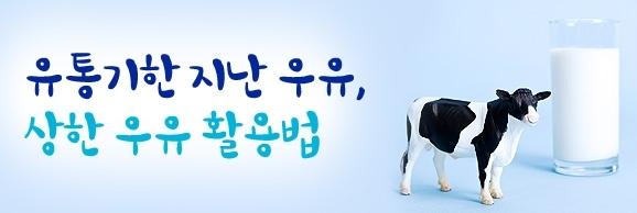 유통기한 지난 우유, 상한 우유 활용법