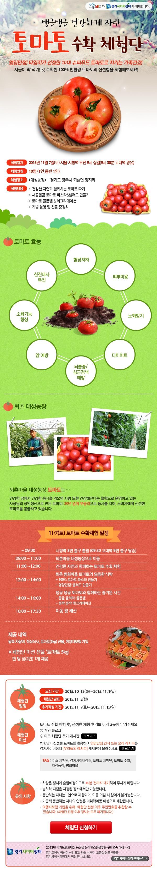 토마토 수확 체험단, miz와 경기 사이버 장터가 함께 합니다.