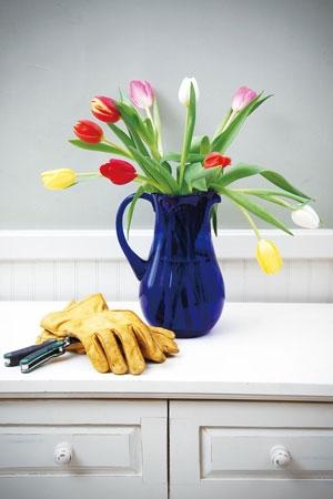 구근식물 화분은 4월이면 꽃대가 올라오고 꽃이 피니 지금 가드닝이 필요하다.